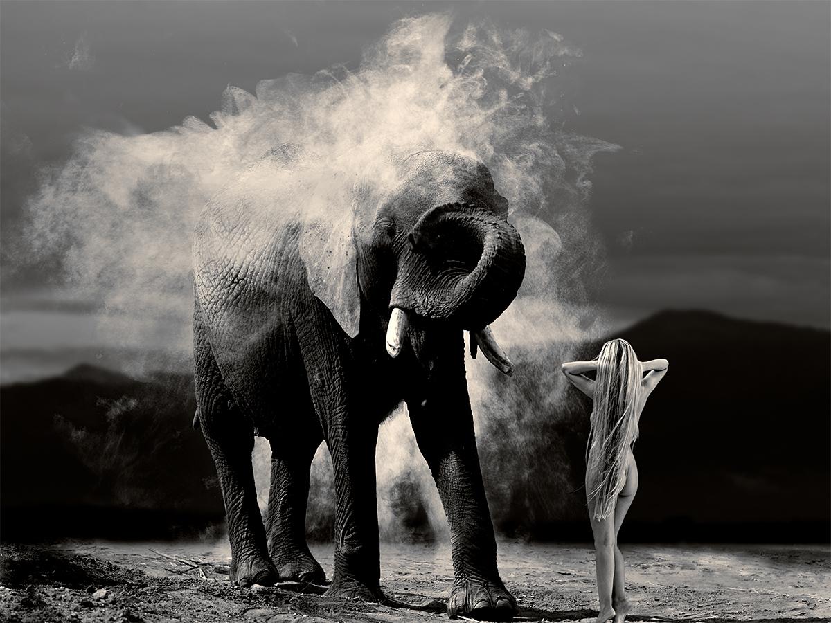 Giant's Dust