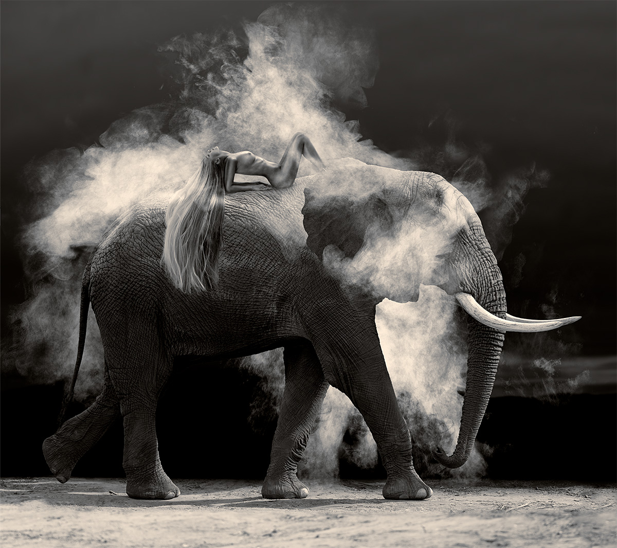 Nude Elephant Dust