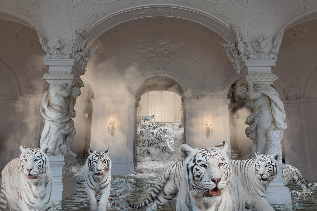 white tigers in palace from treasures series