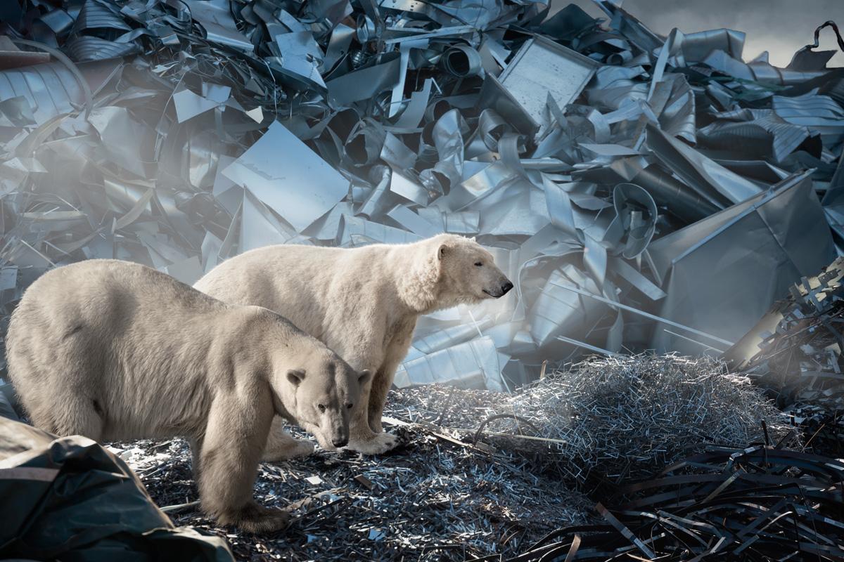 Polar bears surrounded by a scrapheap landscape