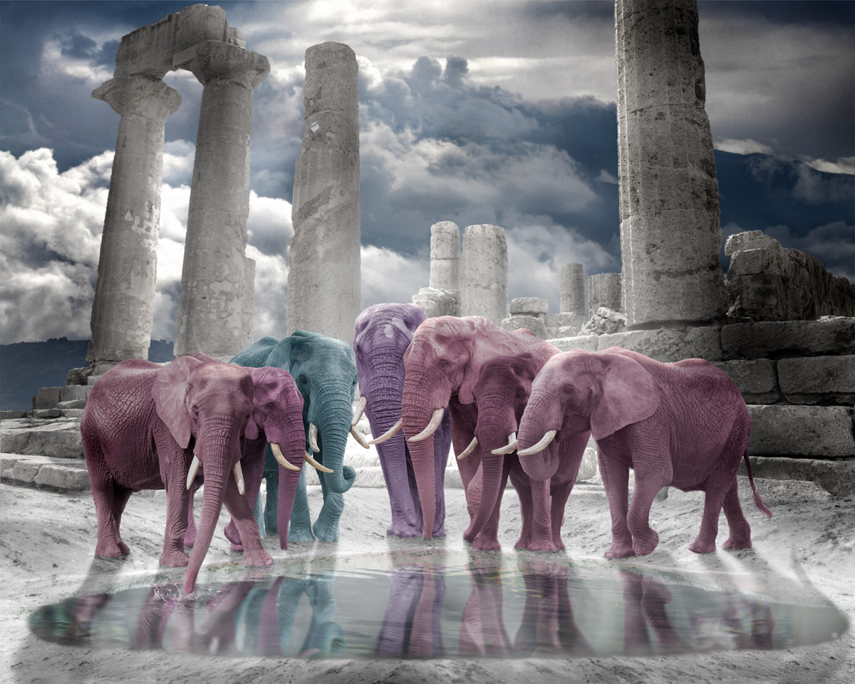 pastel elephants with temple in background