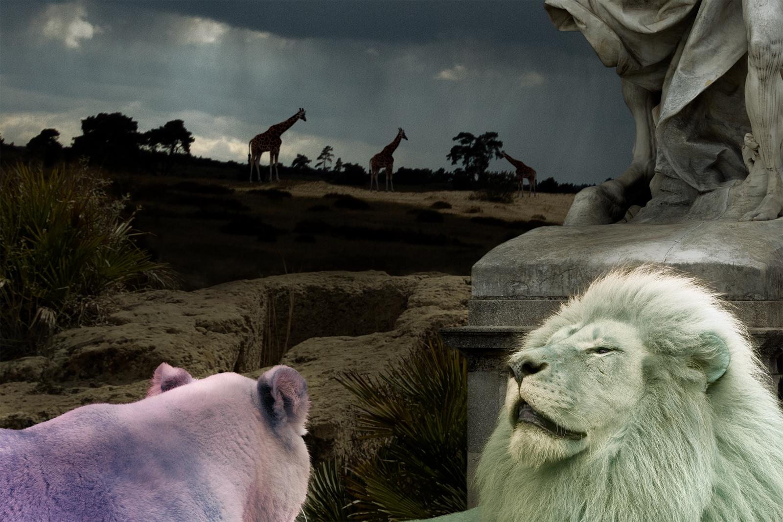 pastel lions closeup