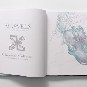 marvels book inside