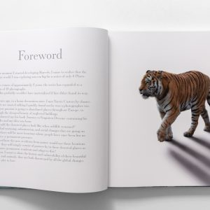 marvels book inside foreword