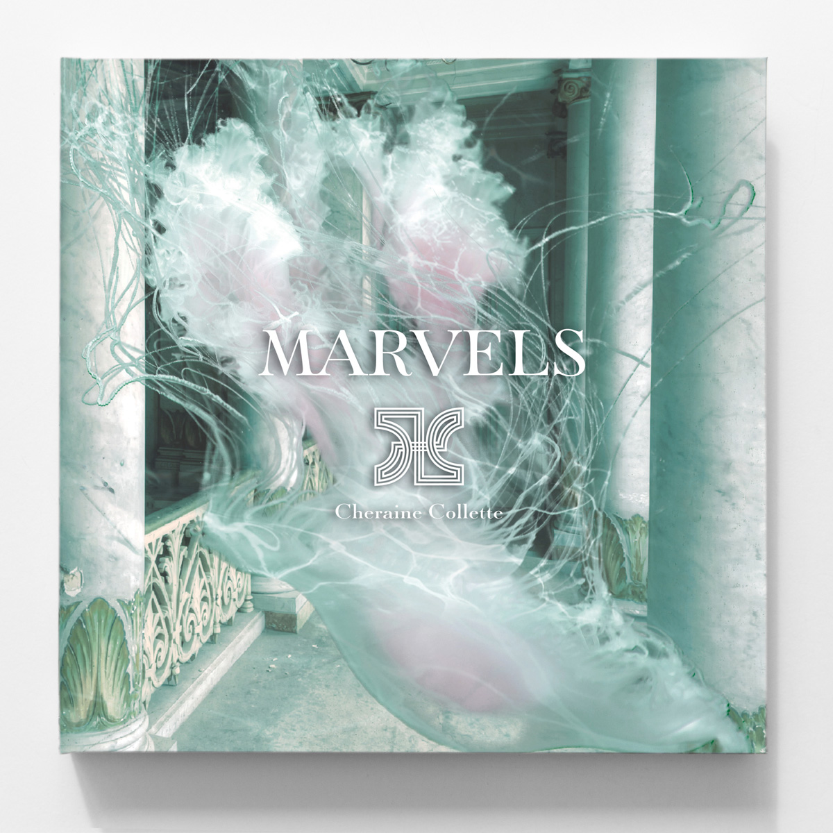 marvels book front cover