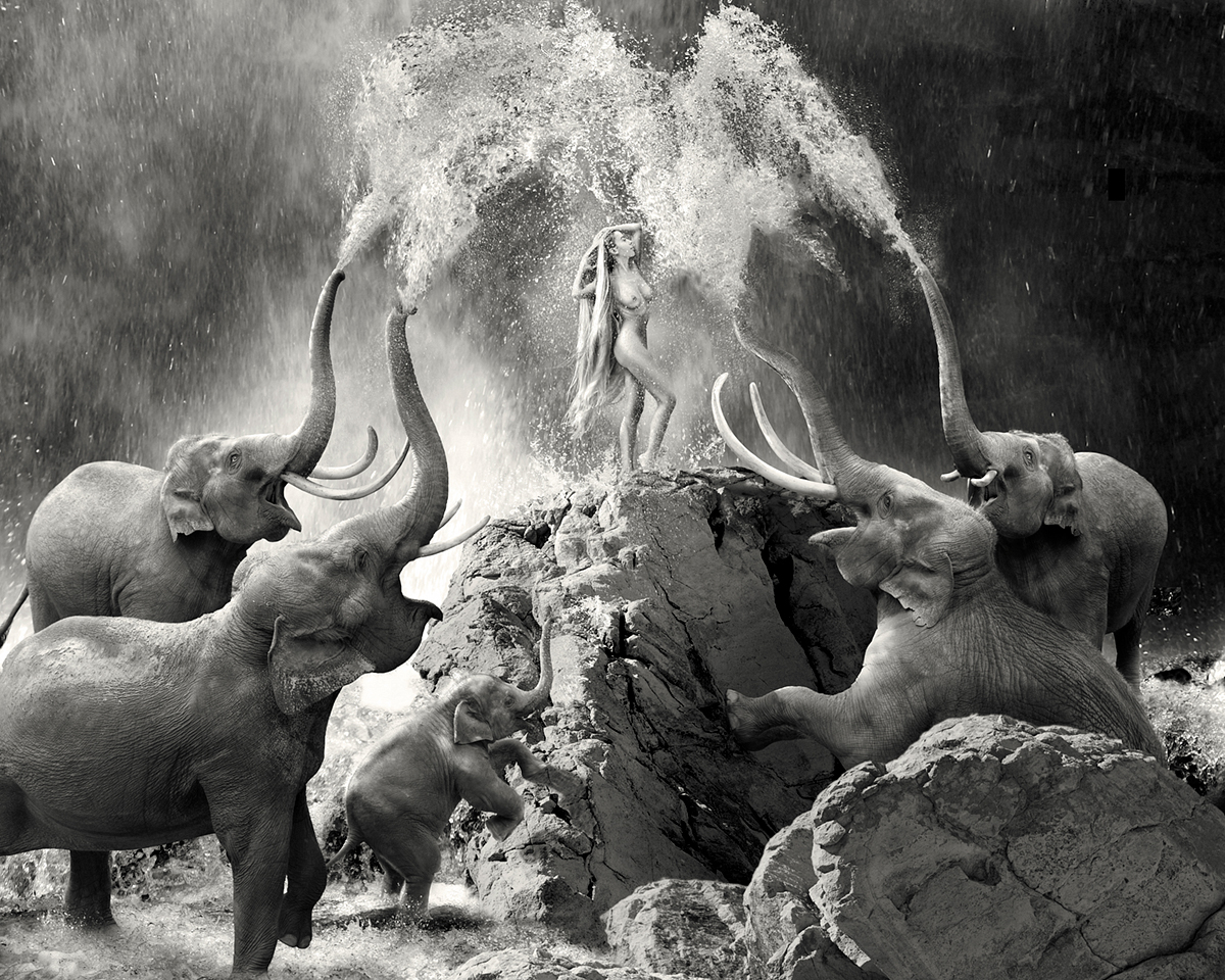 woman nude showering together with elephants