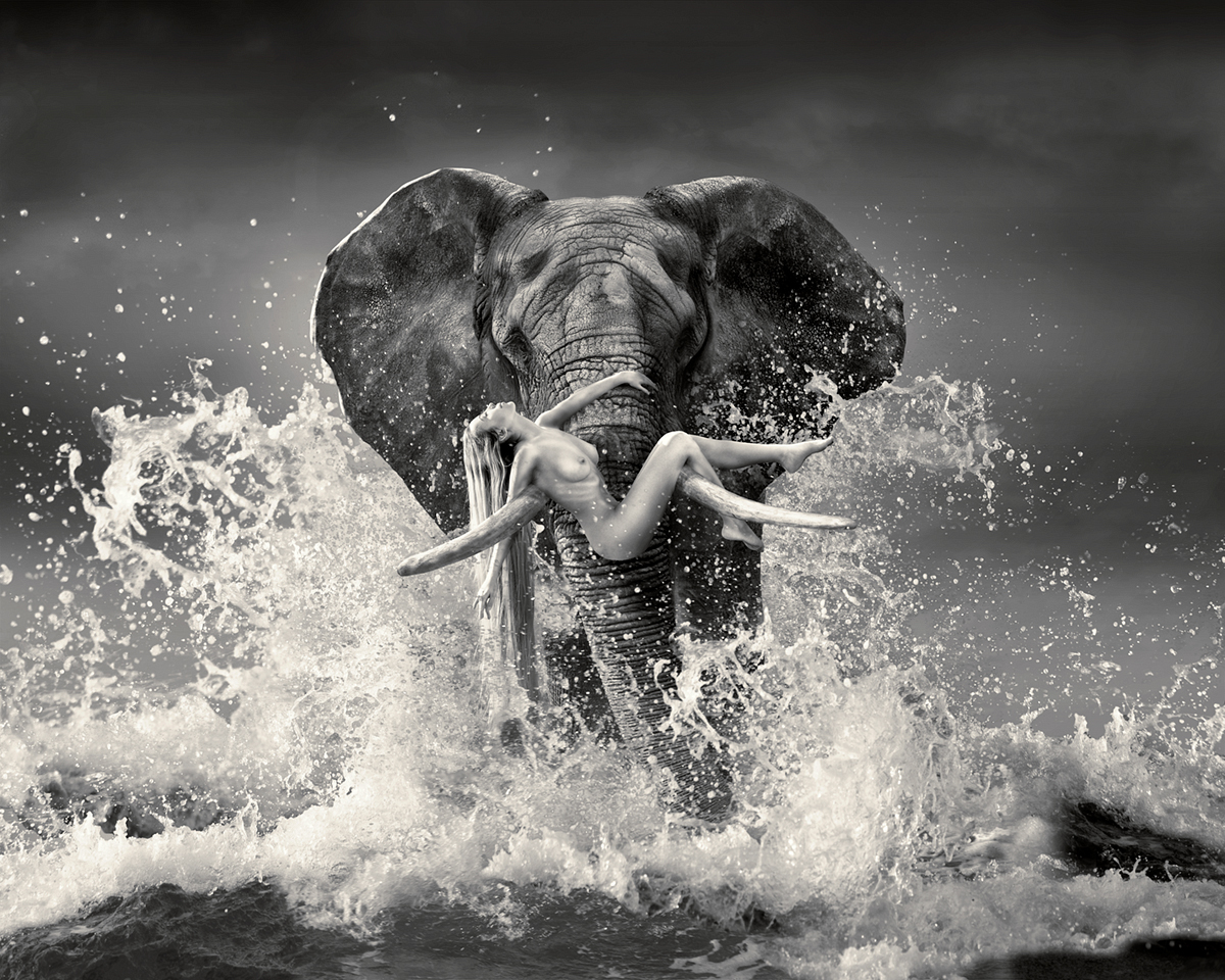 woman being carried by an elephant in the water