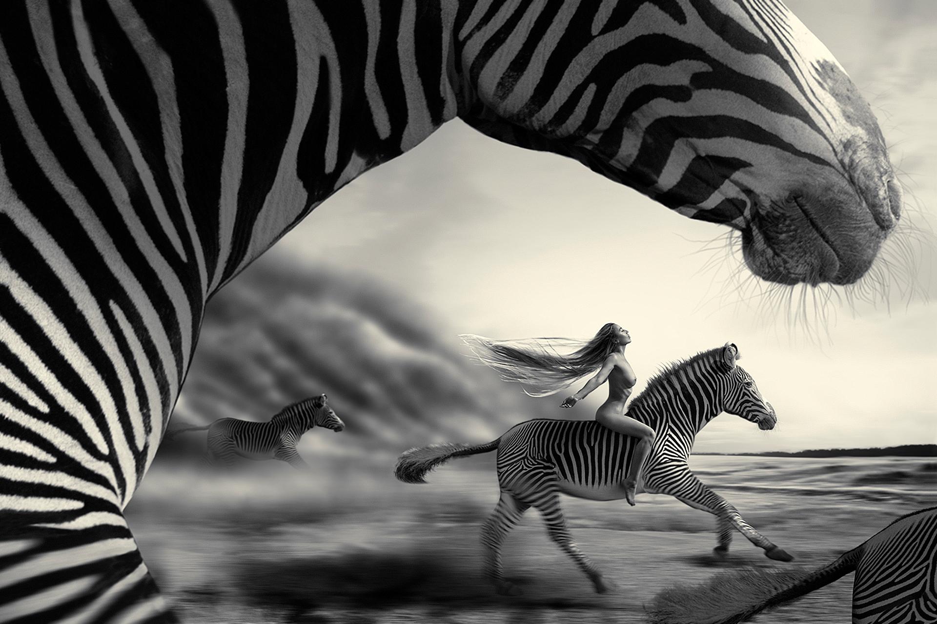 Woman riding a zebra